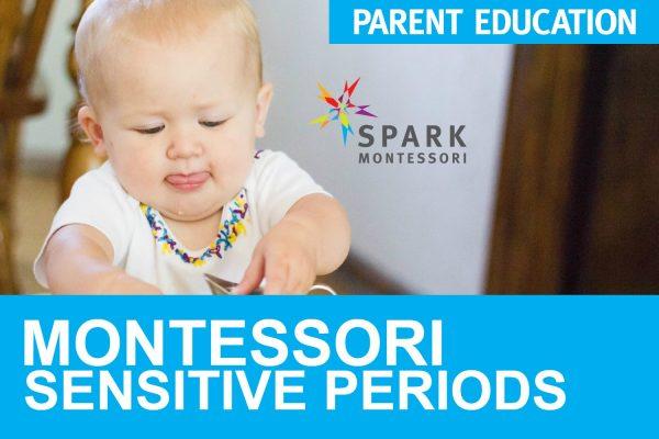Spark Montessori Parent Education